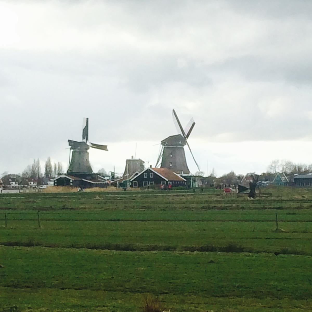 Dutch Way ofNourishment