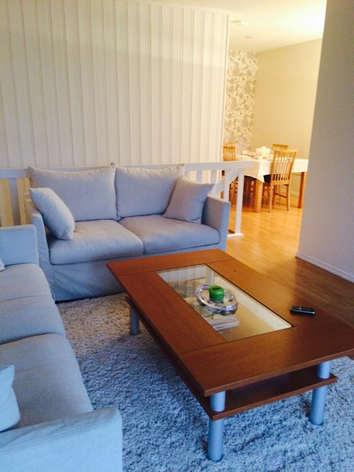 A Nordic living room